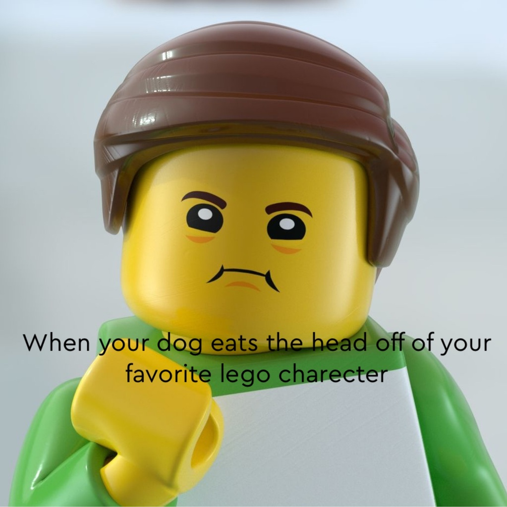 When your dog eats the head of ur lego