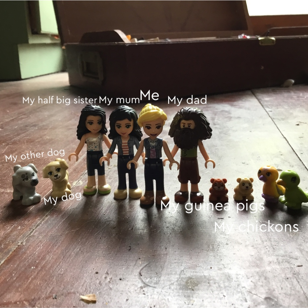 My family in lego form