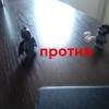 ЛейтенантГениальнаяЛожка