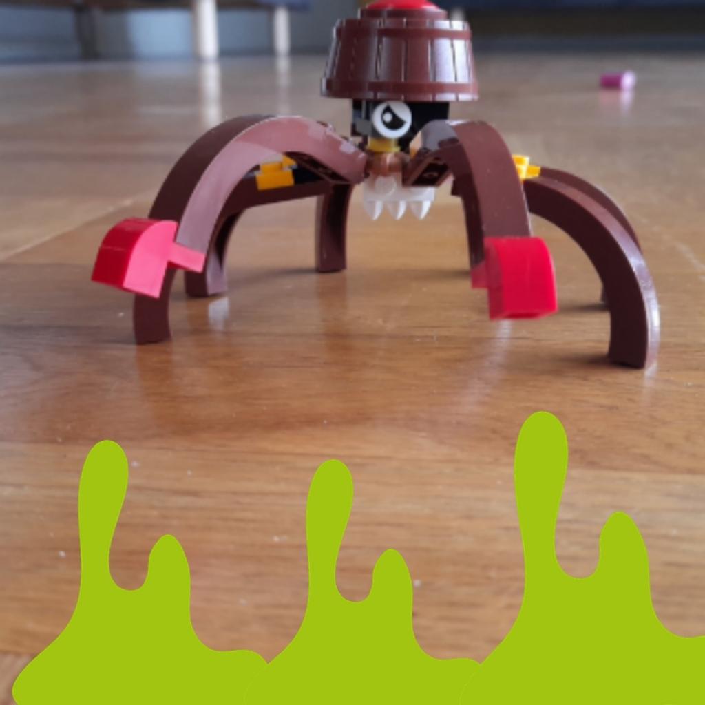 Den nyeste edderkop