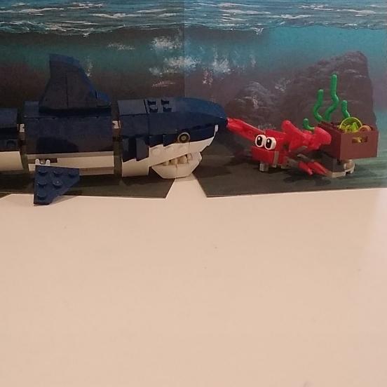Crab and shark and treasure
