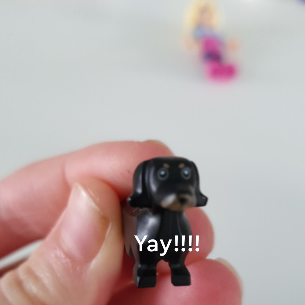I found this in one of my boxes of lego!