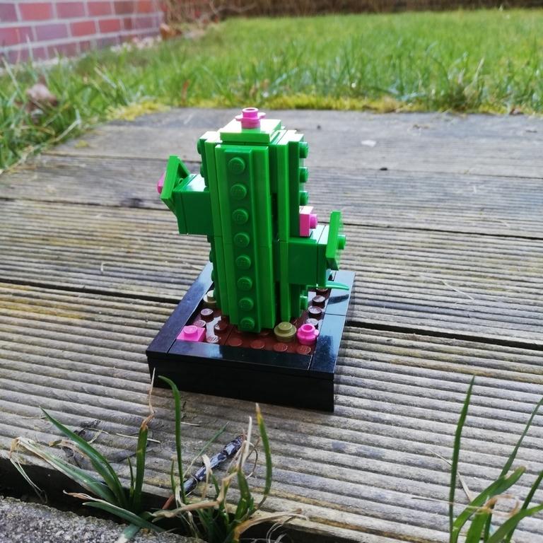 Mein Lego Kaktus 🌵