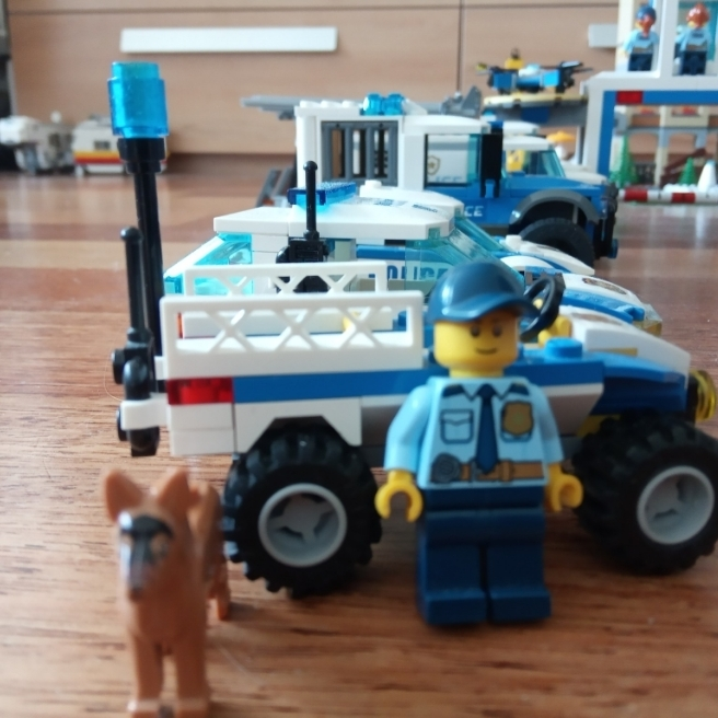 Mieszkańcy LEGO City #10
