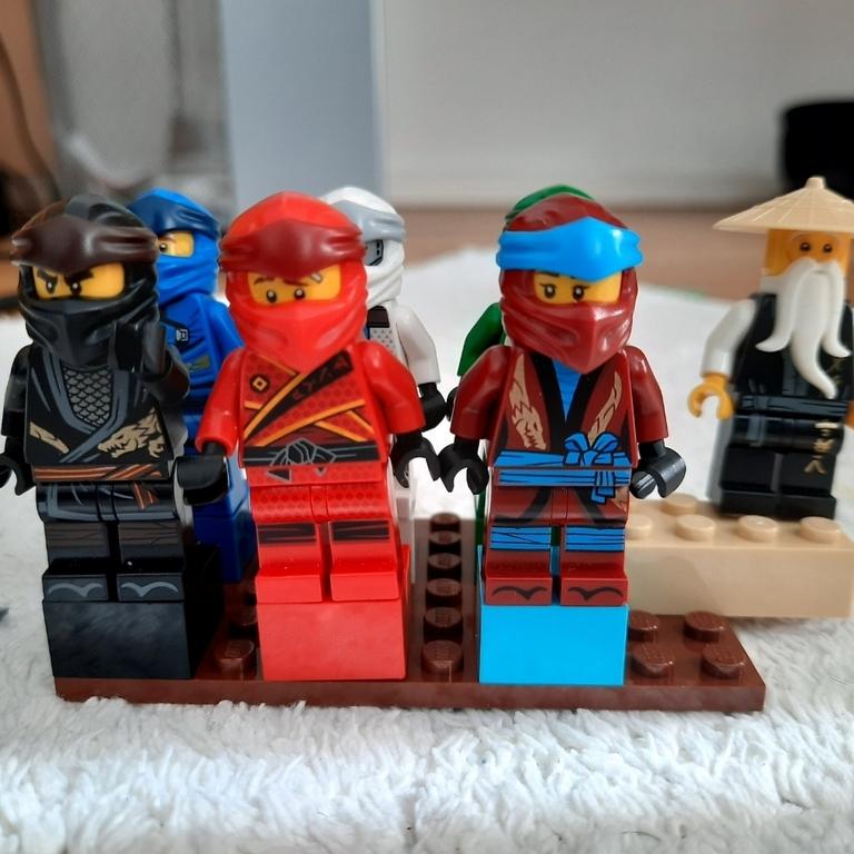 Ninja halter