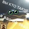 ПилотКоварнаяКрыска