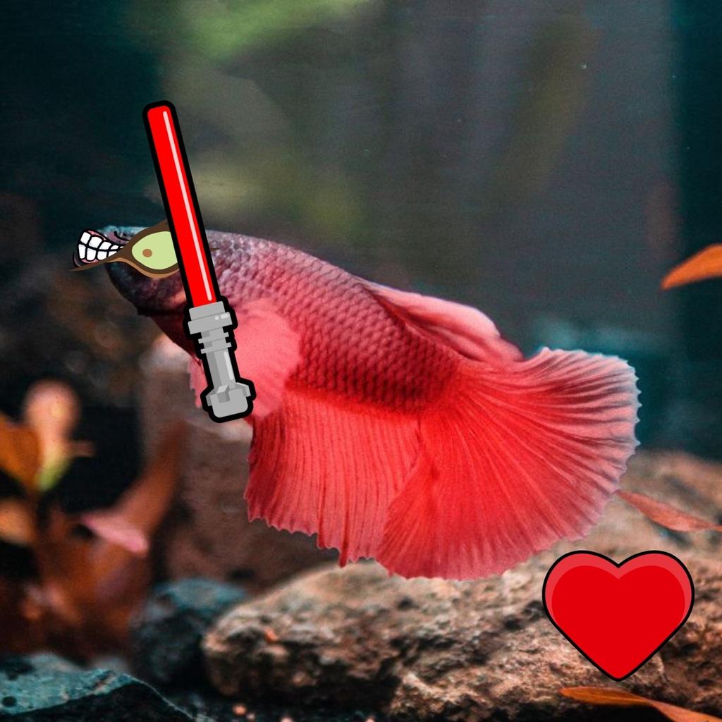 Den onde fisk